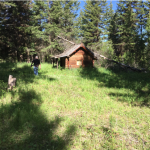 off grid cabin, off grid living, the small cabin