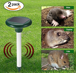 rat trap, mouse, squirrel deterent